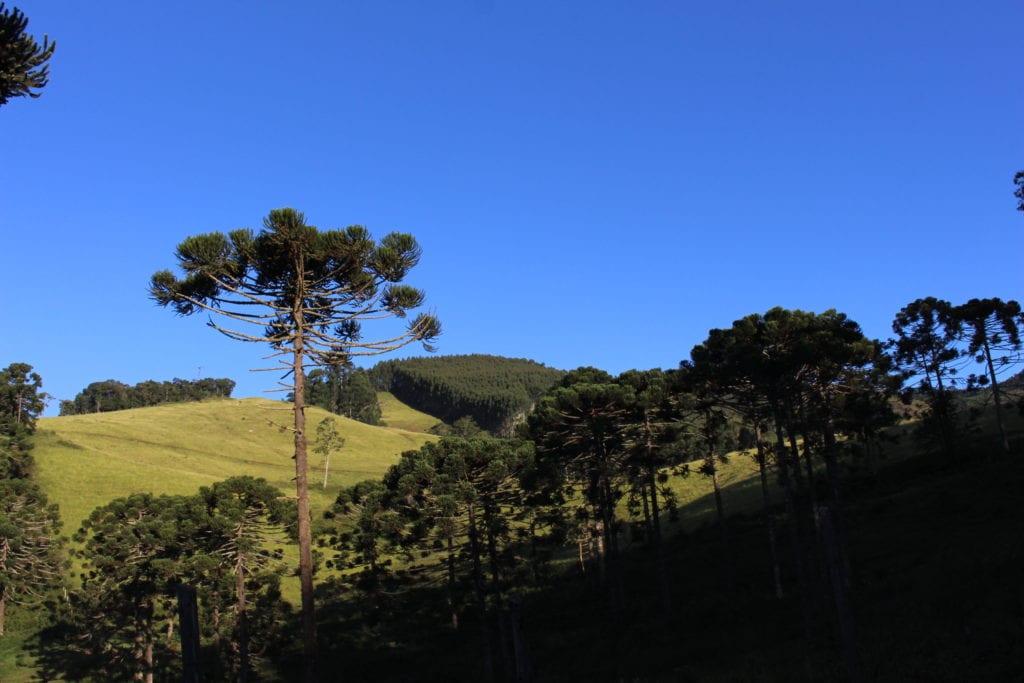 Gonçalves, da Serra da Mantiqueira, vem despontando no turismo rural | Foto: MardenCouto