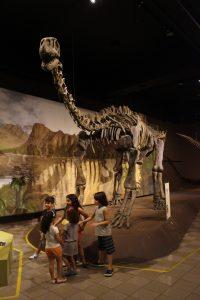 museu de ciencias naturais, credito marden couto