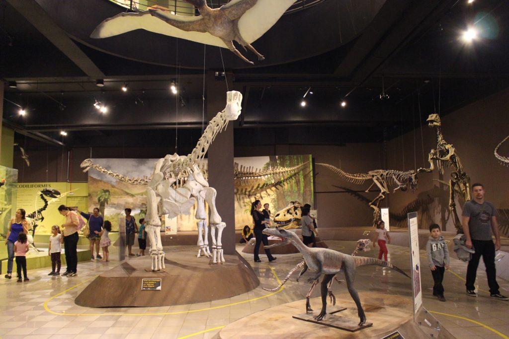 museu de ciências naturais - credito Marden Couto