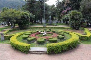 relogio floral- credito Marden Couto
