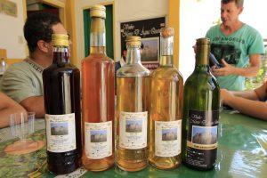 Vinho Morro d'Água Quente - Foto: Marden Couto