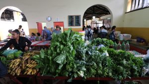 conceição do mato dentro - mercado municipal 2 - credito luana bastos