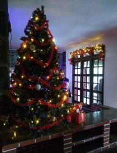 Casa do Papai Noel Taua